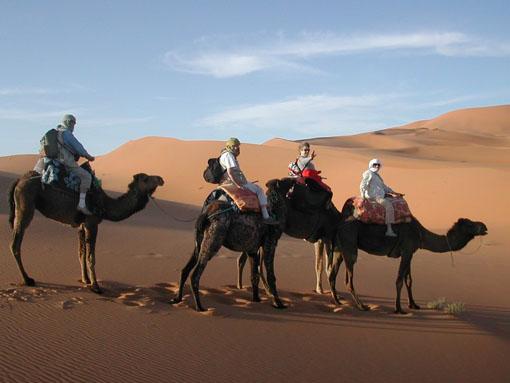 Location voiture Maroc